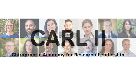 CARL II early-career research fellows announced